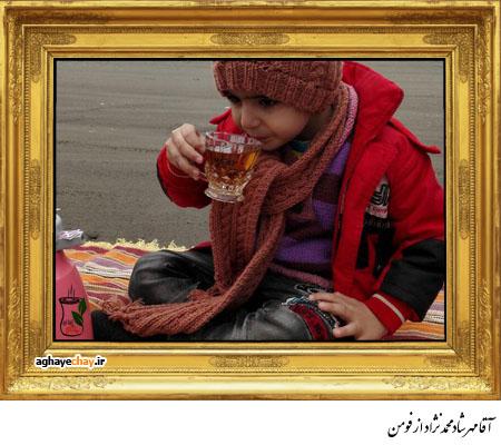 مهرشاد محمدنژاد از فومن