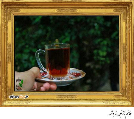 خانم نازنین از بوشهر