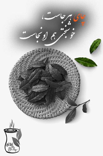 چای سبز درجه یک ایرانی